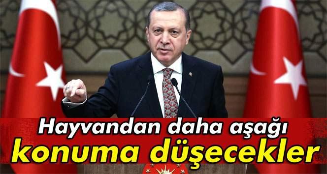 Erdoğan: ´Hayvandan daha aşağı konuma düşecekler´