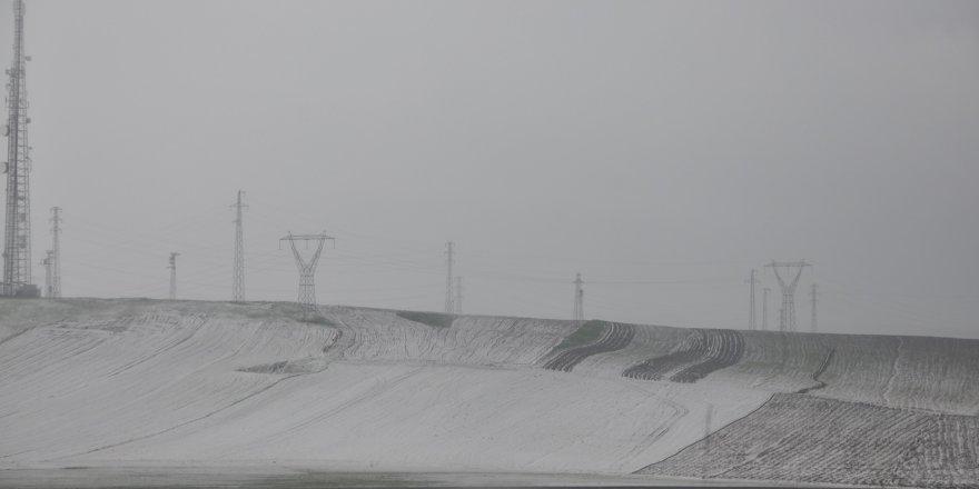 Kars'ta ekili alanları dolu vurdu