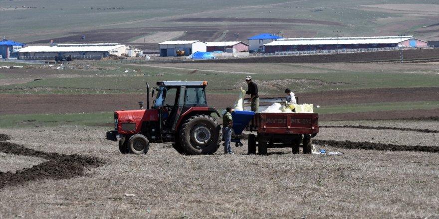 Kars'ta tohumları toprakla buluştu