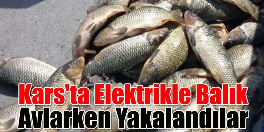 Kars'ta Elektrikle Balık Avlarken Yakalandılar