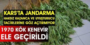 Kars'ta Jandarma Haksız Kazanca Ve Uyuşturucu Tacirlerine Göz Açtırmıyor