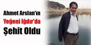Ahmet Arslan'ın Yeğeni Iğdır'da Şehit Oldu