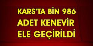 Kars'ta Bin 986 Adet Kenevir Ele Geçirildi