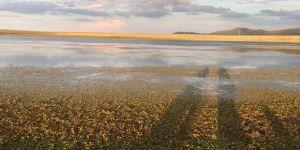 Asboğa Gölü Keşfedilmeyi Bekliyor!