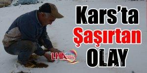 Kars'ta Şaşırtan Olay!