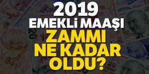 2019 Emekli Maaşı Ve Zammı Ne Kadar ?