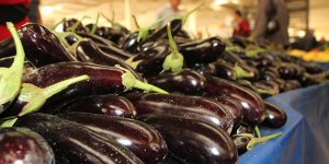 Patlıcanda fiyat farkı şaşırttı: Tarlada 5 TL, İstanbul'da 12 TL