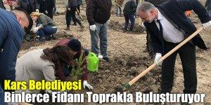 Kars Belediyesi Binlerce Fidanı Toprakla Buluşturuyor