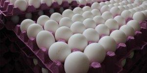 Tavuk yumurtası üretimi Nisan'da azaldı