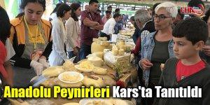 Anadolu peynirleri Kars'ta tanıtıldı
