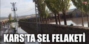 KARS'TA SEL FELAKETİ
