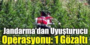 Kağızman Jandarma'dan Uyuşturucu Operasyonu: 1 Gözaltı