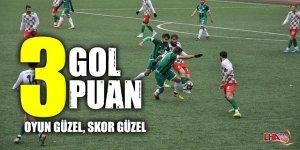Kars 36 Spor: 3 Torul Belediye Gençlik Spor: 0