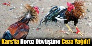 Kars'ta Horoz Dövüşüne Ceza Yağdı