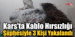 Kars'ta Kablo Hırsızlığı Şüphesiyle 3 Kişi Yakalandı