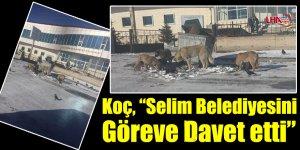 """Koç, """"Selim Belediyesini Göreve Davet etti"""""""