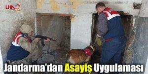 Jandarma'dan Asayiş Uygulaması