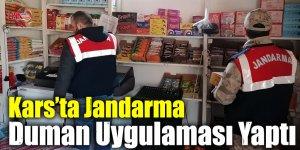 Kars'ta Jandarma Duman Uygulaması Yaptı