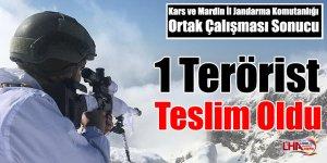 1 Terörist Teslim Oldu