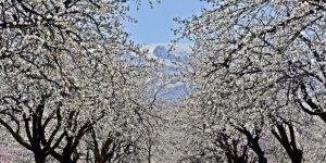 Doğu Anadolu'da sıcaklıklar mevsim normalleri civarında seyredecek