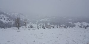 Doğu'da sağanak ve kar yağışı