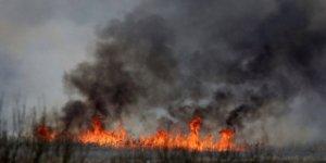 Polonya'nın en büyük milli parkı yanıyor