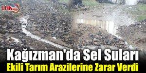 Kağızman'da Sel Suları Ekili Tarım Arazilerine Zarar Verdi