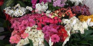 Korona virüs salgını çiçek satışlarını artırdı