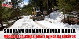 Sarıçam Ormanlarında Karla Mücadele Çalışması Mayıs Ayında da Sürüyor