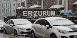 Erzurum'da baharı beklerken kış geri geldi