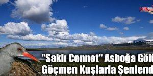 """""""Saklı Cennet"""" Asboğa Gölü Göçmen Kuşlarla Şenlendi"""