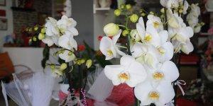 Anneler Günü'nde çiçek satışları geçmiş senelere göre rekor kırdı