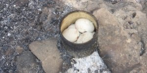 Kara yolunda yumurta pişirirken orman yangını çıkardı