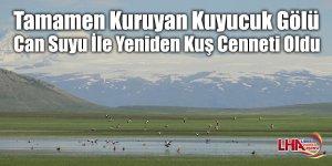 Tamamen Kuruyan Kuyucuk Gölü Can Suyu İle Yeniden Kuş Cenneti Oldu