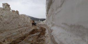 Trabzon'da karla kaplı yayla yolları açılıyor