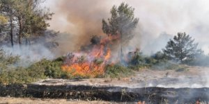 KKTC'de üç farklı bölgede yangın devam ediyor