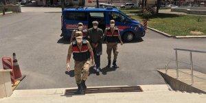 Osmaniye'de terör örgütü El Kaide zanlısı tutuklandı