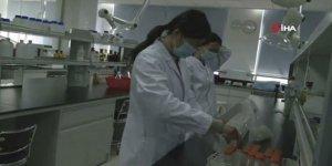 Çin aşı çalışmaları testlerine temmuzda başlıyor
