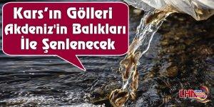Kars'ın Gölleri Akdeniz'in Balıkları İle Şenlenecek