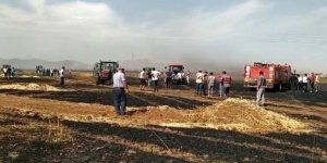 Ateşe verip kaçtılar, 600 dönüm buğday ekili tarla küle döndü