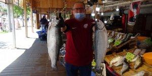 Pandemi sürecinde balık satışları arttı