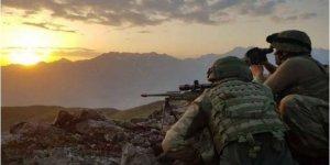 Bitlis kırsalında 2 terörist daha etkisiz hale getirildi