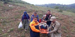 Kaybolan yaşlı kadın ormanlık alanda bulundu