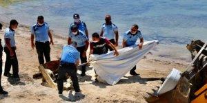 Didim'de kaçak yapılar yıkıldı