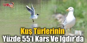 Kuş Türlerinin Yüzde 55'i Kars Ve Iğdır'da