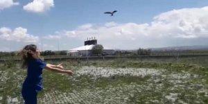 Kars'ta Ebabil kuşu ile Kerkenez tedavi altına alındı
