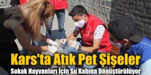 Kars'ta Atık Pet Şişeler Sokak Hayvanları İçin Su Kabına Dönüştürülüyor