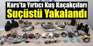 Kars'ta Yırtıcı Kuş Kaçakçıları Suçüstü Yakalandı