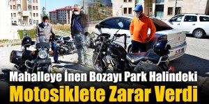Mahalleye İnen Bozayı Park Halindeki Motosiklete Zarar Verdi