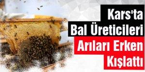 """Kars'ta Bal Üreticileri Arıları Erken """"Kışlattı"""""""